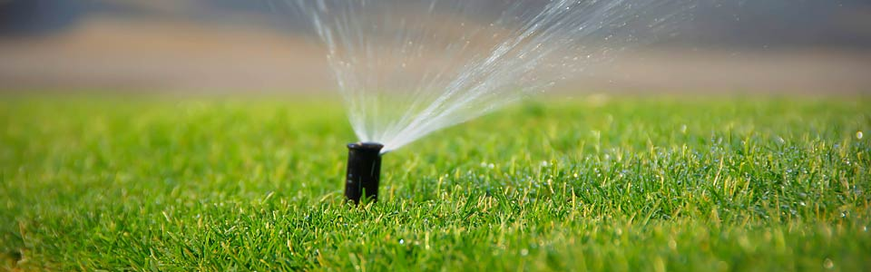 Pop up sprinkler head running on green lawn