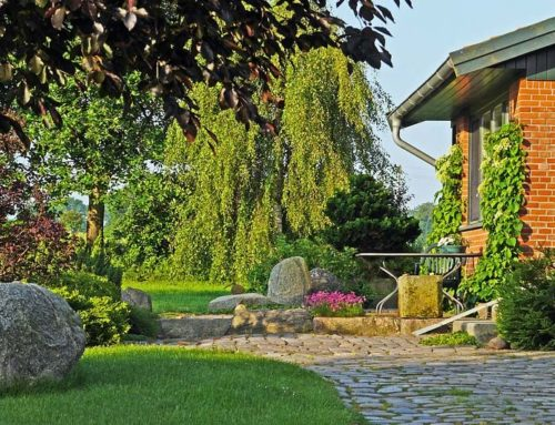How to Create Fire Resistant Landscaping Without Sacrificing Your Yard