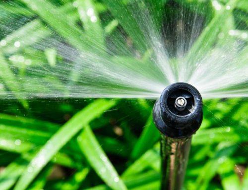 5 Ways to Make a Sprinkler System more Efficient