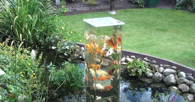 Did You Ever Imagine That Koi Ponds Could Be So Modern With This Incredible Viewing Tower Invite Your Fish To Interact In A New Way Enjoy Their Beauty