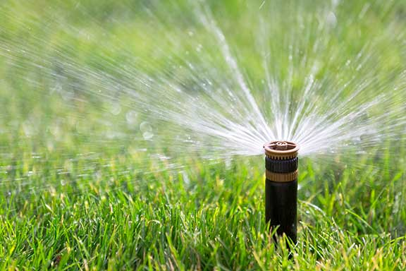 Hunter sprinkler head replaced by irrigation contractor in Los Angeles