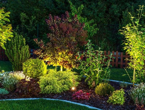 landscape created by our Woodland Hills landscaping team