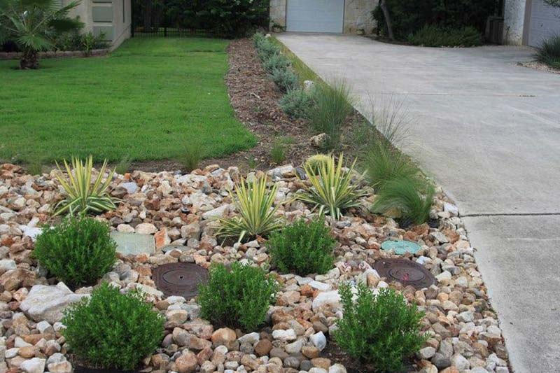 a drought tolerant landscape created by our team