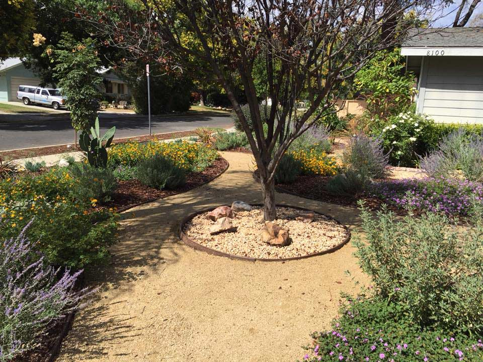 Japanese style landscape installation in Canoga park with natural stone walkway and decorative hardscaping