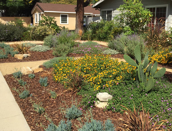 a landscaper in West Hills can help you have a backyard worthy of entertaining