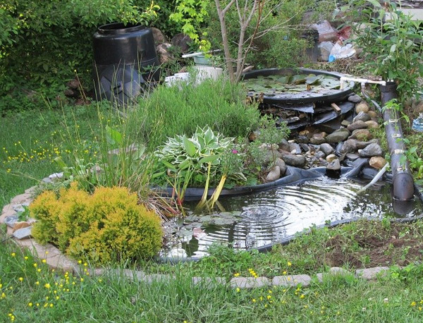 Small garden pond with river rock and natural plants installed by our landscapers